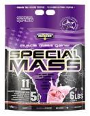 Special Mass Gainer Maxler